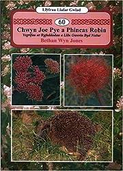 Llyfrau Llafar Gwlad:60. Chwyn Joe Pye a Phincas Robin - Ysgrifau ar Ryfeddodau a Llen Gwerin Byd Natur