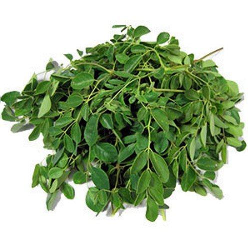Moringa (Moringa oleifera) - Blätter getrocknet - 150 Gramm im Aromaschutzbeutel