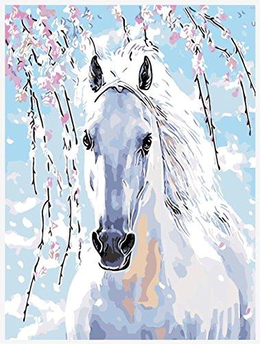 hlen Kits || Pferd Plum Blossom weiß 50x 40cm || Malen nach Zahlen, DIGITAL Ölgemälde, Framed (Star Trek-geburtstag Karten)