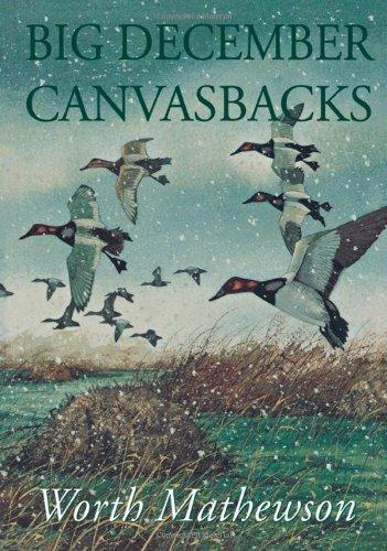 Big December Canvasbacks, Revised Paperback February 29, 2000