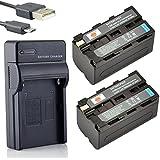 DSTE NP-F750 Li-ion Batterie (2-Pack) et chargeur USB costume pour Sony CCD-SC5 CCD-TRV80PK DCR-TRV820 CCD-SC55 CCD-TRV81 DCR-TRV820K CCD-SC65 CCD-TRV815 DCR-TRV9 CCD-TR3 CCD-TRV82 DCR-TRV900 CCD-TR3000