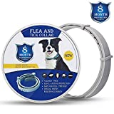 Zwini Flea and Tick Collar for Dogs Natural Dog Anti Flea Collar