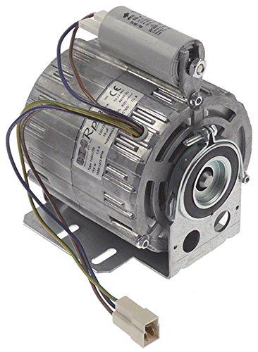 RPM 11002708 Motor für Brasilia 105, 105SL, Gradisca, Century, Firenze für Drucksteigerungspumpe mit Kondensator 10µF 230V 165W -