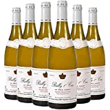 Jacques Dury Rully Premier Cru Burgundy 2013 75 cl (Case of 6)
