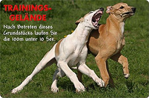 -greyhound-metall-warnschild-schild-hundeschild-sign-gry-06-t20