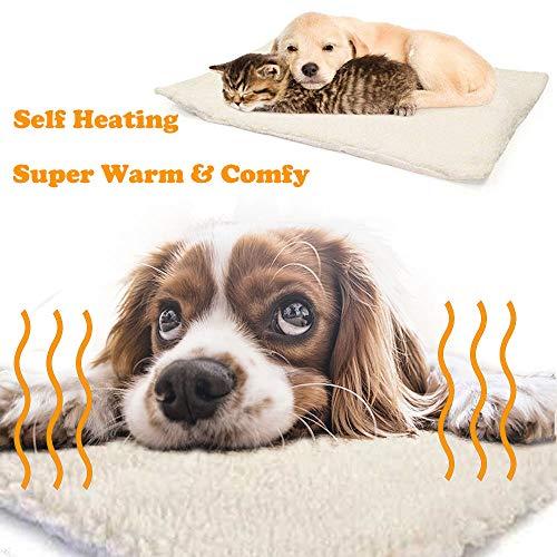 OneBarleycorn - Manta térmica para Gatos Perros