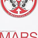 Beautiful Lie by 30 SECONDS TO MARS