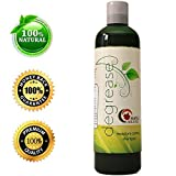 Maple Holistics Shampoo for Oily, Itchy Greasy Hair & Scalp with Organic Rosemary - 100% Natural Color Treated Safe Treatment for Women & Men by Maple Holistics