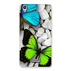 Special Premier Butterflies Multicolor Back Case Cover for Lava-Pixel-V1