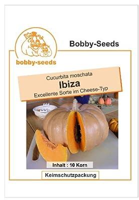 Bobby-Seeds Kürbissamen Ibiza Portion von Bobby-Seeds - Du und dein Garten