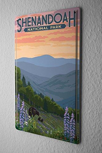 Blechschild Urlaub Reisebüro Shenandoah National Park