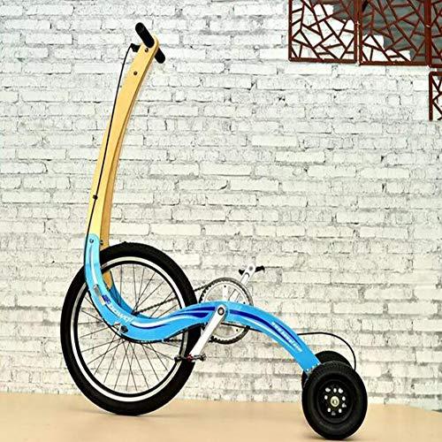 BTSSA Fahrrad Balance Dreirad Fitness Scooter Kreative Persönlichkeit Semi-Bike, kann Stehen und EIN dreirädriges Klapprad Fahren,C