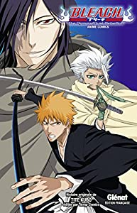 Bleach the diamond dust rebellion Edition simple One-shot