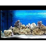 TM Aquatix Aquarium Sand White Fish Tank Substrate Natural Silica 0,5-0,8mm / 5kg 9