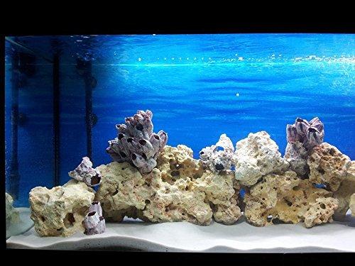 TM Aquatix Aquarium Sand White Fish Tank Substrate Natural Silica 0,5-0,8mm / 5kg 2