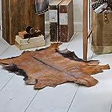 LOBERON Ziegenfellteppich Piedro, LxB ca. 85-90x55-60 cm, natur, 100% Ziegenfell, hochwertige Qualität, Vintage-Stil