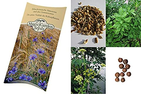 Kit de graines: 'Herbes de l'amour et de romance', 3 plantes aphrodisiaques pour les potions d'amour