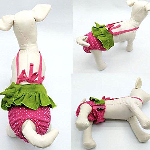 Wiederverwendbare weibliche Hundewindeln, waschbare Haustier-physiologische Menstruationsschlüpfer-Verpackung mit Verpackungen Klett, bequemes justierbares waschbares langlebiges Gut (M, Strawbarry)