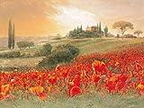 Leinwandbild, Tuscany Poppy Field, Landschaft mit Mohnblumen, Gemälde, rot, bunt, 80 x 60 x 3,1 cm von Eurographics
