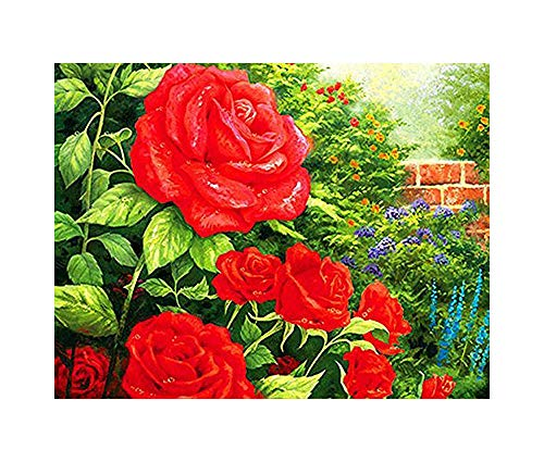 GMMH Diamond Painting Set Image 14 x 18 Diamant Peinture Broderie à la Main Bricolage mosaïque Pierres Fleurs Roses