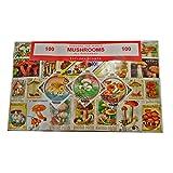 Worldwide-Souvenir a forma di fungo, colore: funghi Stamp Collection Souvenir %2F Speicher %2F! Memoria! altamente motivo: tutti da collezionare. Diverse, 100 diversi timbri per francobolli da collezione di tutto il mondo! Timbre %2F Stencil %2F Francobollo Sello %2F.