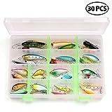 LotFancy 30 Leurres de Pêche avec Boîte - Appâts Poisson Pêche Carpe Brochet Bouchons Mouche Minnow Basse, Crochet Triple, Multi-coloré