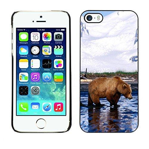 ouucase Coque rigide pour iPhone 5/5S Motif Cool Grizzly Bear DIY HD Housse PC Pour New Design