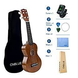 Soprano Ukulele For Beginner Ukulele Starter Kits 21 Inch Hawaii Ukulele With Tuner, Bag, Picks, Extra String, Wipe (Brown)