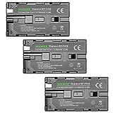 Best Batteries Sony rechargeables - Neewer 3 pièces 2600mAh Li-ion Batterie de Remplacement Review