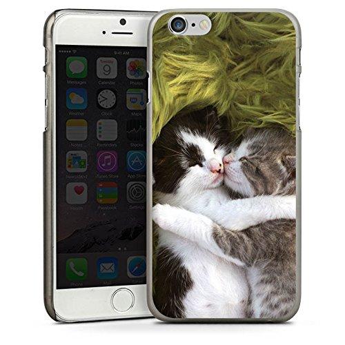Apple iPhone 5 Housse étui coque protection Bébés chats Chat Petit chat CasDur anthracite clair