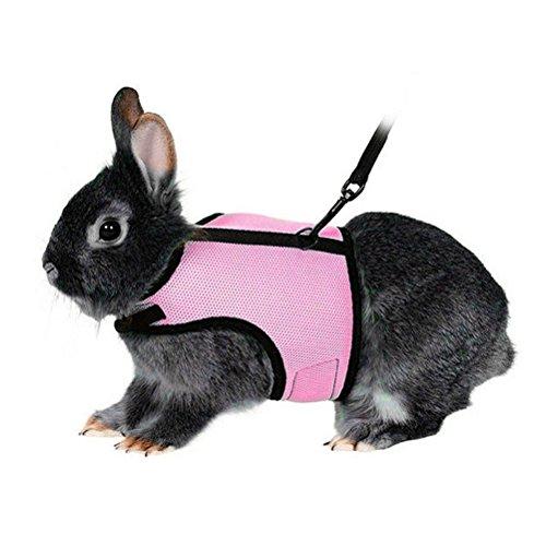 UEETEK Softgeschirr mit Blei für Kaninchen Hase elastische Länge 47 Zoll - Größe L (rosa)