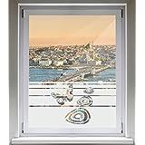 INDIGOS UG Sichtschutzfolie Glasdekorfolie Fensterfolie mit Motiv satiniert blickdicht - E274 Schönen Schmetterling - 1000 mm Länge - 500 mm Höhe Streifen
