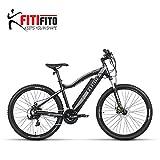 Fitifito MT27,5 Elektrofahrrad Mountainbike E-Bike Pedelec, 36V 250W Heckmotor, 21 Gang Shimano Schaltung, Matt Grau Schwarz