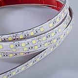 Mextronic LED Streifen LED Band LED Strip 5050 Kaltweiß (6000k) 72W 500CM 24V IP67