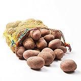 Kartoffeln Laura Speisekartoffeln 12,5kg