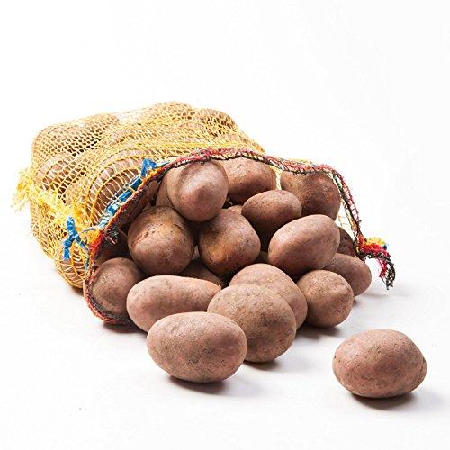 Preisvergleich Produktbild Kartoffeln Laura Speisekartoffeln 25kg