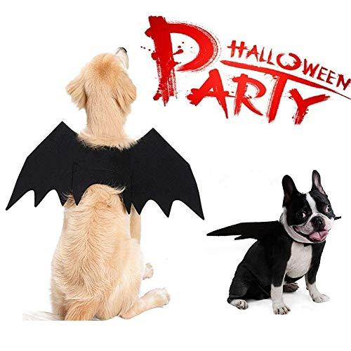 MGPET Fledermausflügel, Halloween-Kostüm für Hunde und Katzen, Vampirschläger-Kostüm, Flügel für Weihnachten, S, Hund