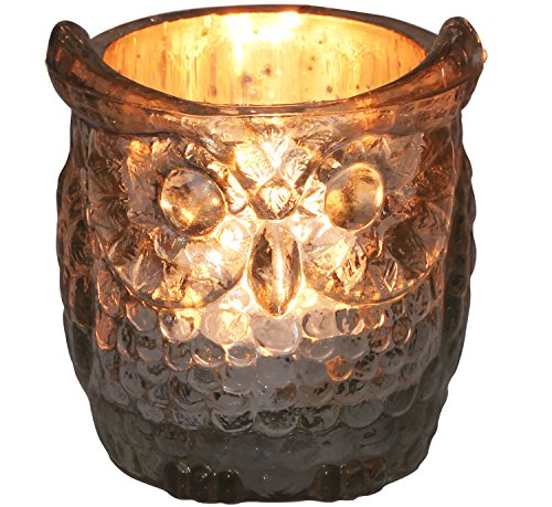 sale-on-tealight-holders-clearance-deals-owl-tea-light-holder-in-glass-with-real-silver-like-coating