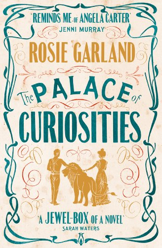 The Palace of Curiosities (English Edition)