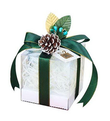 Kostüm Candy Apple - Spicy Meow 10 Stück Weihnachten Apple Boxen Transparent Candy Geschenkbox Grünes Band + Pinienkerne