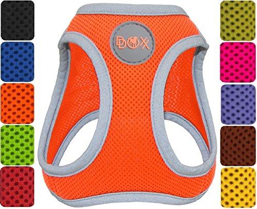 DDOXX Hundegeschirr reflektierend Air Mesh | Step-In | für große, mittelgroße, mittlere & Kleine Hunde | Geschirr Hund | Katze | Brustgeschirr | Softgeschirr | Zubehör | Orange, Größe D (L)