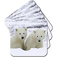 Eisbärjungen im Schnee Set aus 4 Untersetzern preisvergleich bei billige-tabletten.eu