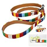 collectsound Colorful Hund Walking Training Sicherheit Leine Traction Seilen Pet Supplies