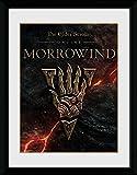 1art1 106772 The Elder Scrolls Online - Morrowind, Logo Gerahmtes Poster Für Fans und Sammler 40 x 30 cm