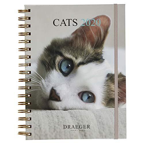 Draeger - Große Spiralagenda Katzen 2020 - Starrer Deckel - 3 Aufkleberbögen - Doppelter Wochenraster - Zertifizierter FSC Mixed - Gemüsetinte - 7 Sprachen