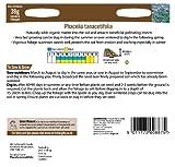 Mr. Fothergills 15841 39g Manure Phacelia Tanacetifolia Seeds - Green
