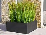 Pflanzschale CONCHA L50x B50x H20cm, aus Fiberglas in schwarz-anthrazit, Blumenschale, Dekoschale, Pflanzkübel, Blumenkübel