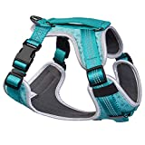 Embark Sports Dog Harness, No Pull, Front Leading Dog Harness - Easy On and Off, Breathable Dog Harnesses with Control Handle - Size Adjustable and Non Choke (Small, Teal)