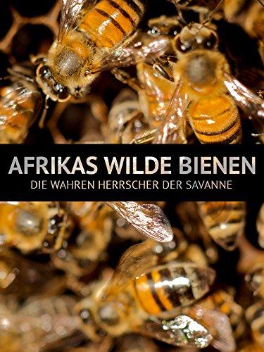 Afrikas wilde Bienen - Die wahren Herrscher der Savanne
