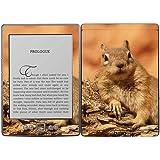 Royal Wandtattoo RS. 35234selbstklebend für Kindle, Design Eichhörnchen auf Ast - gut und günstig
